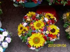 jesen,zagreb,cvijece
