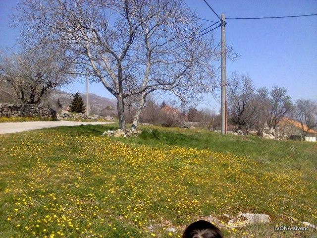 Proljeće u Siveriću