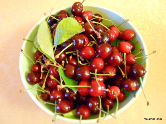 Rane trešnje